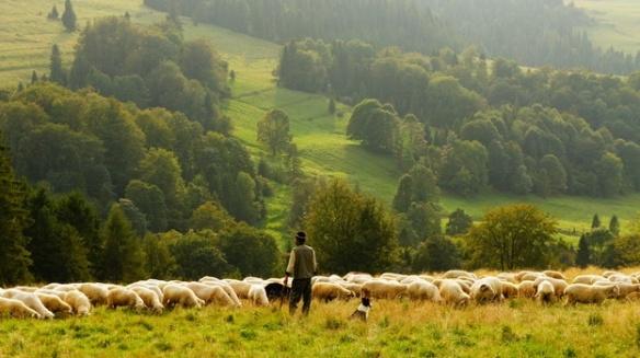 socrate e il contadino