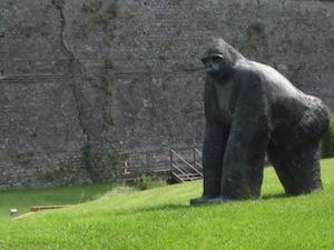 statua gorilla priamar
